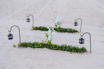 Beach Wedding Pix 5594