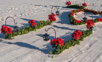 Gulf Shores Beach Wedding Px 4940